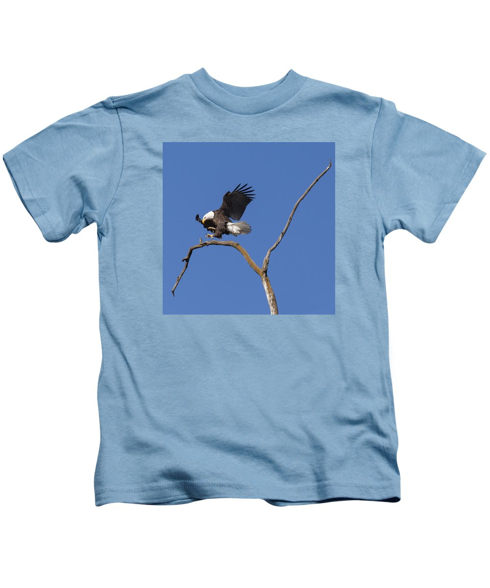 Eagle Kids T-Shirt featuring the photograph Smooth Landing 5 by David Lester