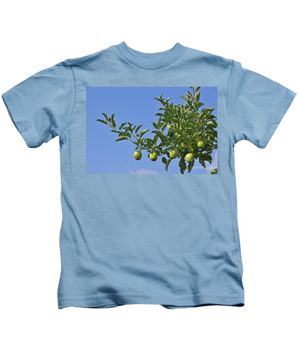 Malus Domestica Kids T-Shirt featuring the photograph 110414p073 by Arterra Picture Library