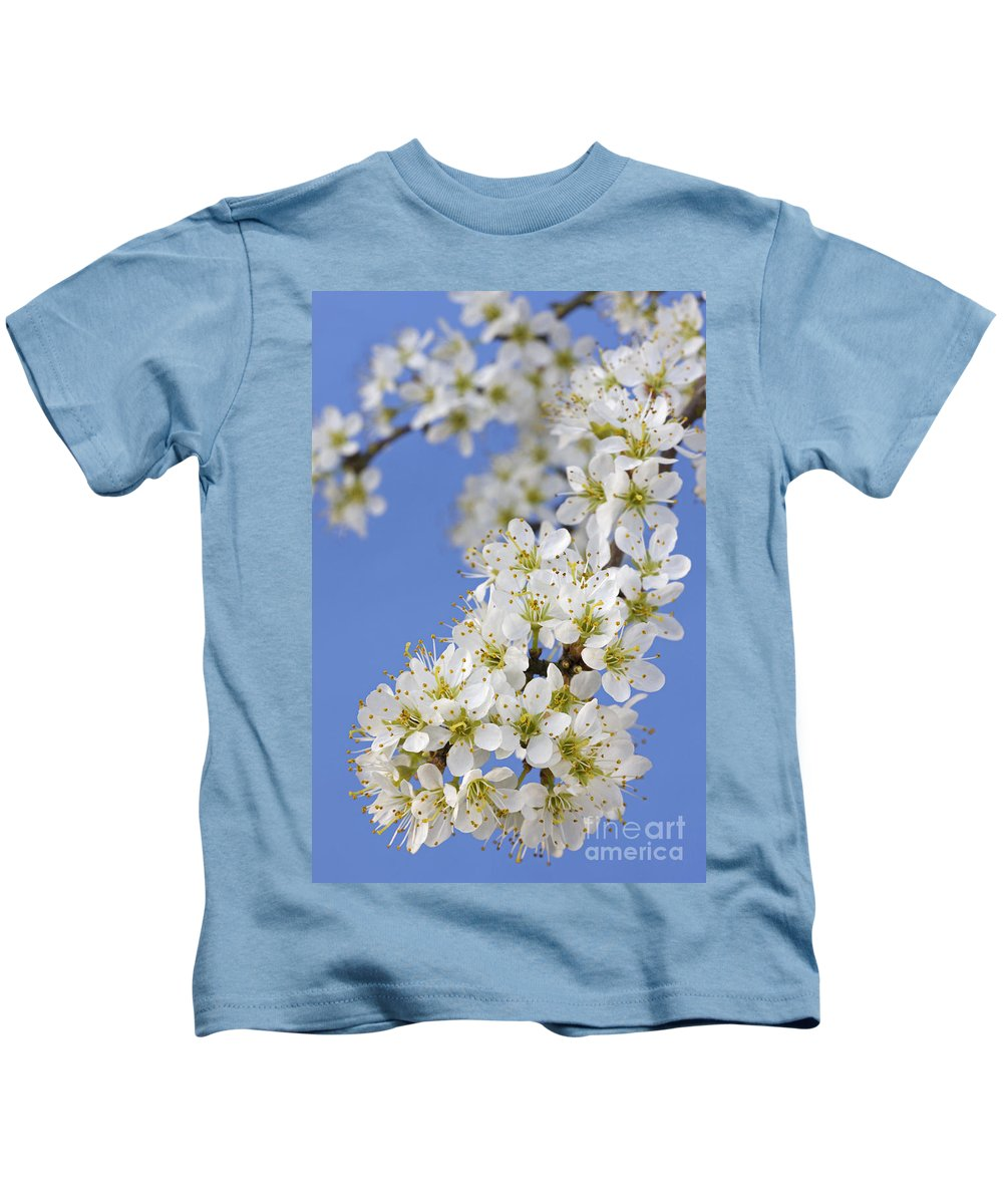 Blackthorn Kids T-Shirt featuring the photograph 110506p225 by Arterra Picture Library