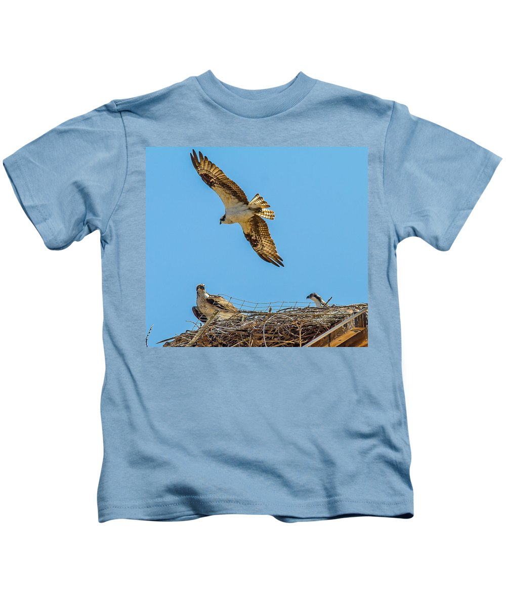 Doves Kids T-Shirt featuring the photograph 3 Ospreys At The Nest by Brian Williamson