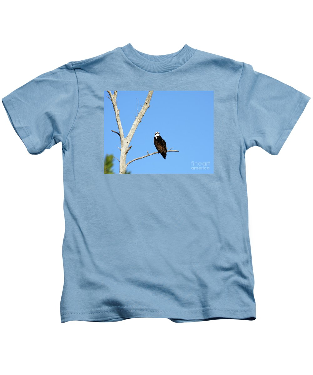 Feather Kids T-Shirt featuring the photograph Osprey by Christiane Schulze Art And Photography