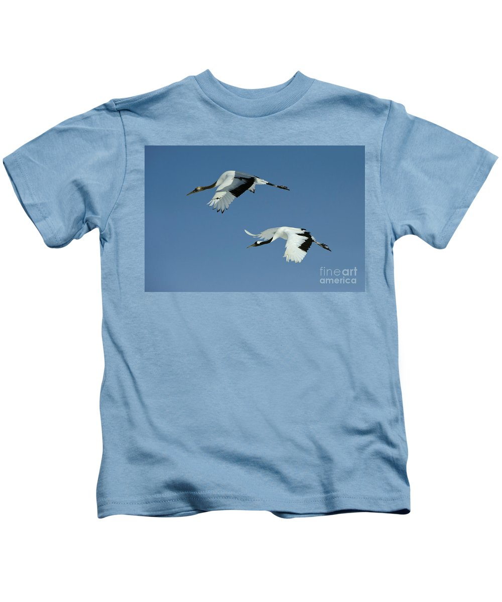Asia Kids T-Shirt featuring the photograph Red-crowned Cranes by John Shaw