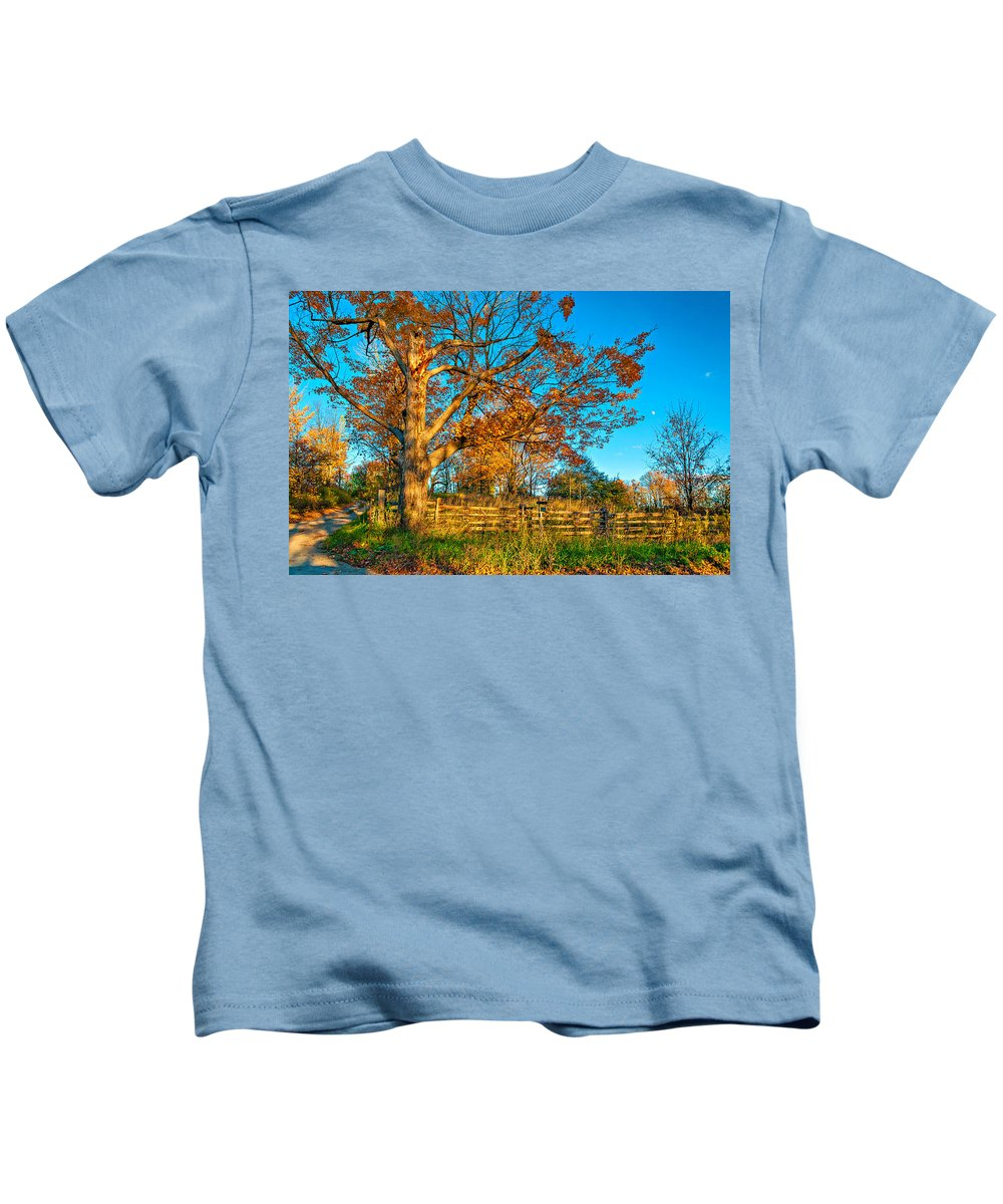 Maples Kids T-Shirt featuring the photograph Aged Beauty 2 by Steve Harrington