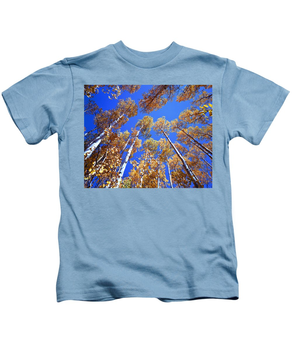 Aspens Kids T-Shirt featuring the photograph Aspen Tree Tops by Rich Franco