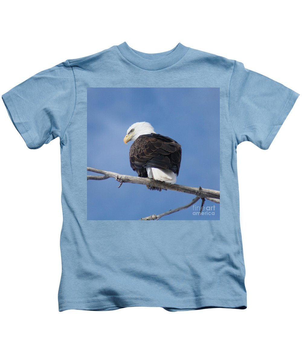 Bald Eagle Kids T-Shirt featuring the photograph Bald Eagle by Brandi Maher