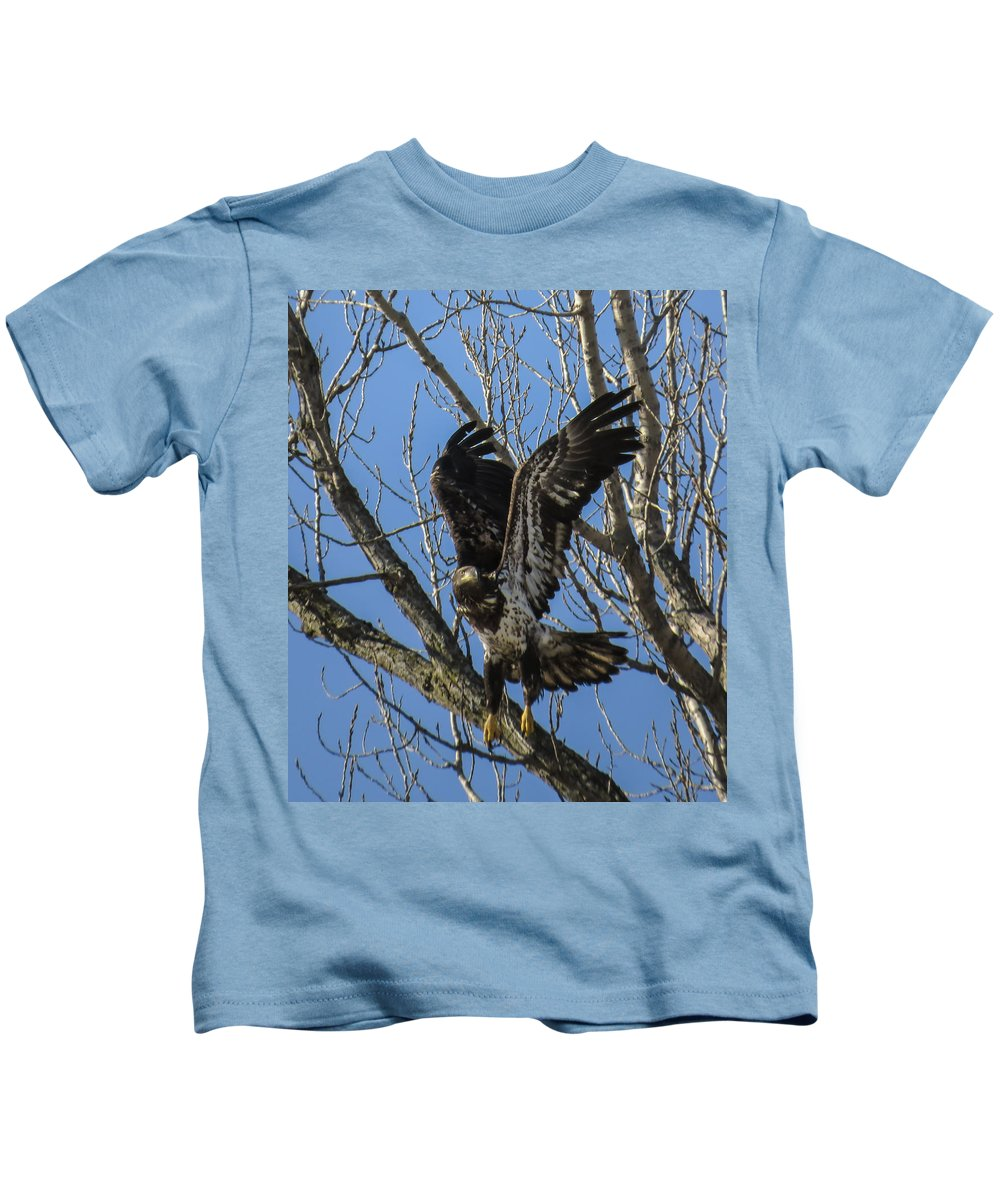 Avian Kids T-Shirt featuring the photograph Bald Eagle Juvenile Take Off by Deb Fedeler