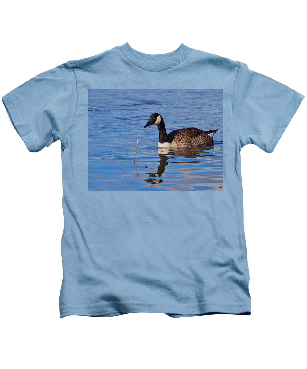 Alankomaat Kids T-Shirt featuring the photograph Canada Geese by Jouko Lehto