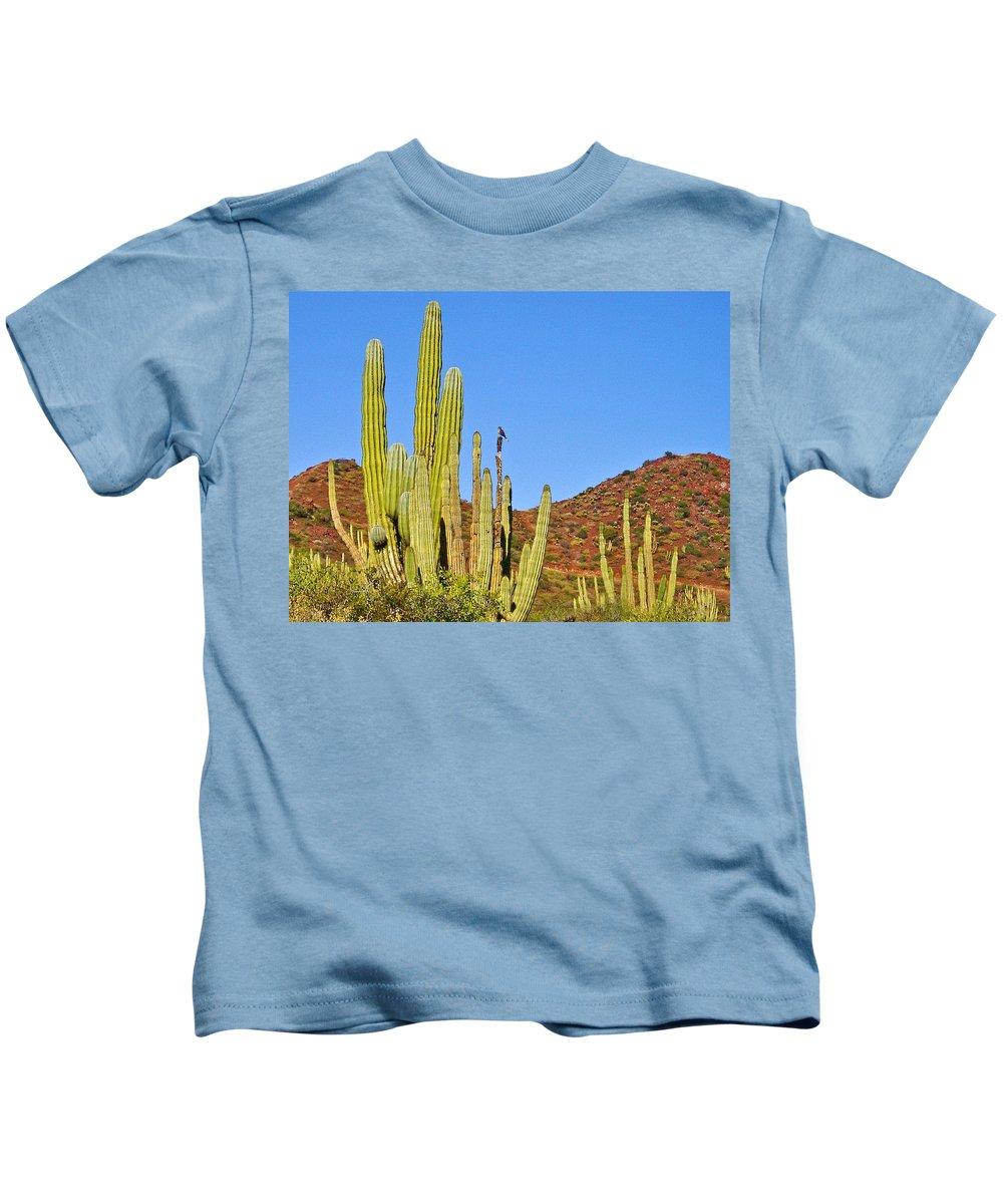 Cardon Cactus In Bahia Kino Kids T-Shirt featuring the photograph Cardon Cactus In Bahia Kino-sonora-mexico by Ruth Hager