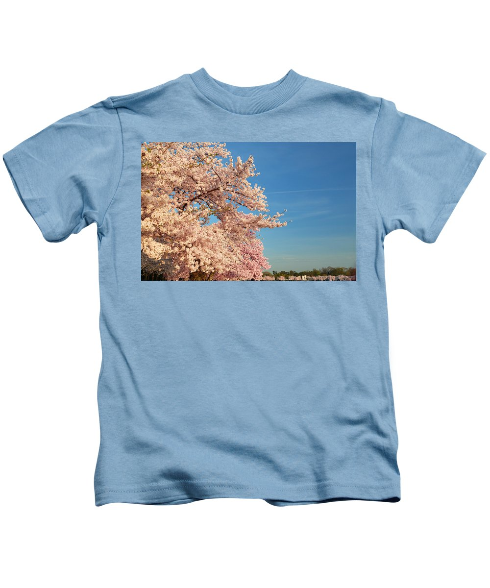 Architectural Kids T-Shirt featuring the photograph Cherry Blossoms 2013 - 014 by Metro DC Photography