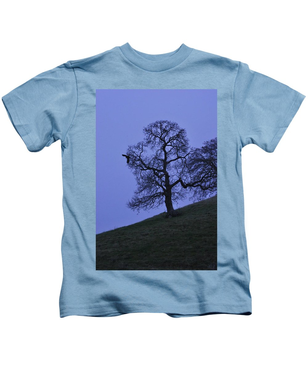 Eagle Kids T-Shirt featuring the photograph Eagle And The Oak by Bradley Bennett