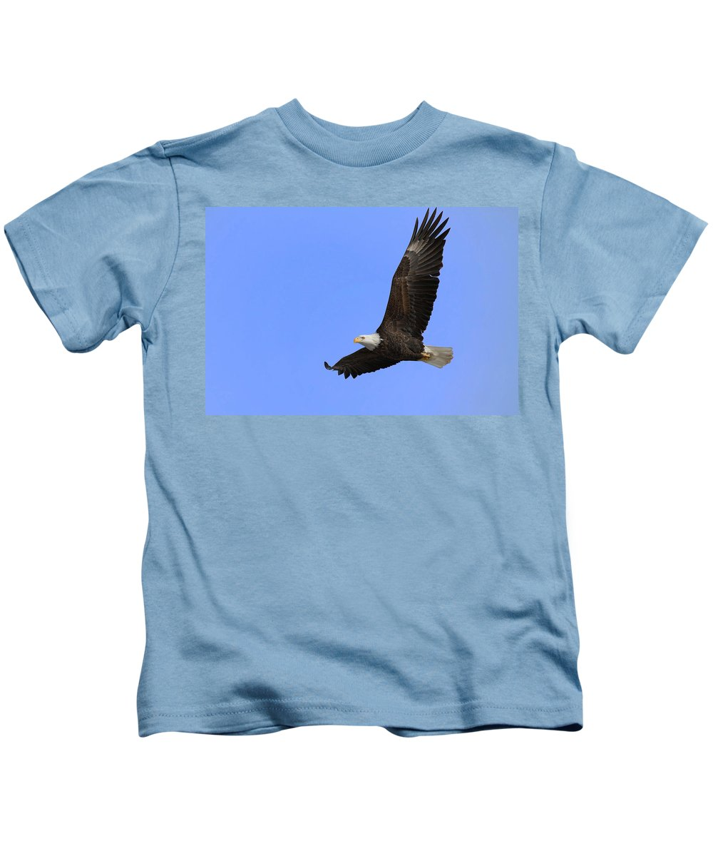 Bird Kids T-Shirt featuring the photograph Eagle In Flight by John Absher