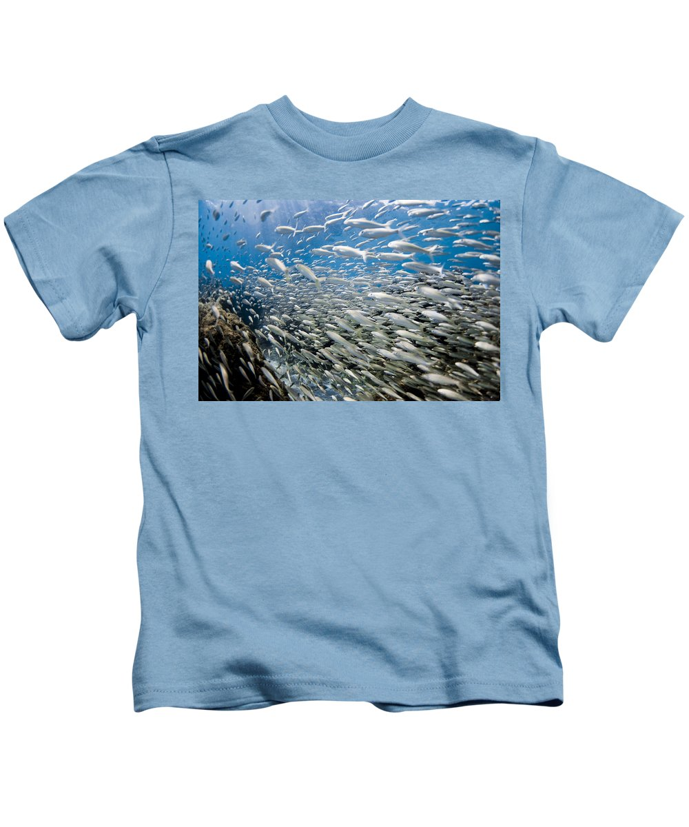 Ocean Underwater Kids T-Shirt featuring the photograph Fish Freeway by Sean Davey