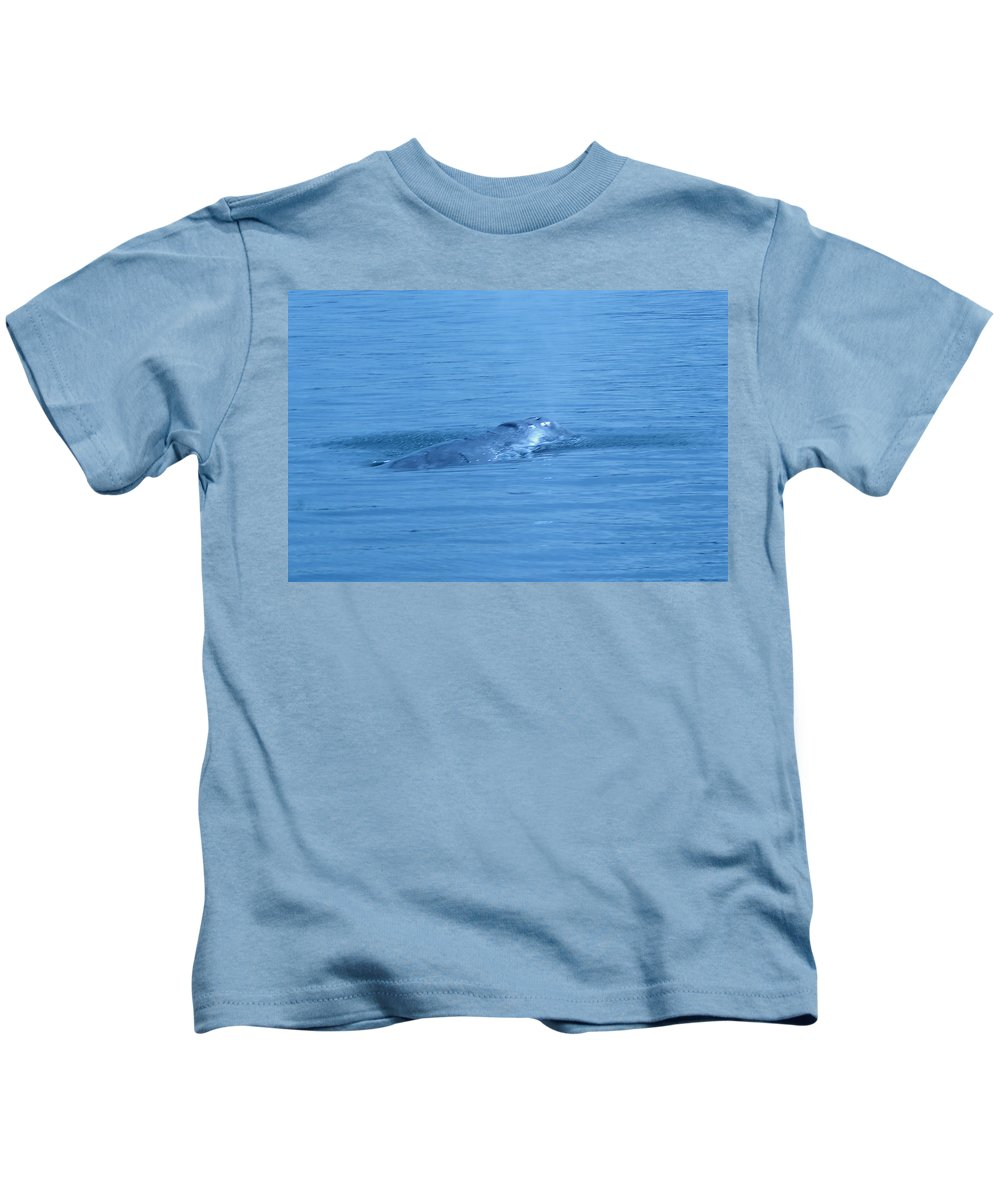 Whales Of Puget Sound Kids T-Shirt featuring the photograph Floating Along by Jeff Swan