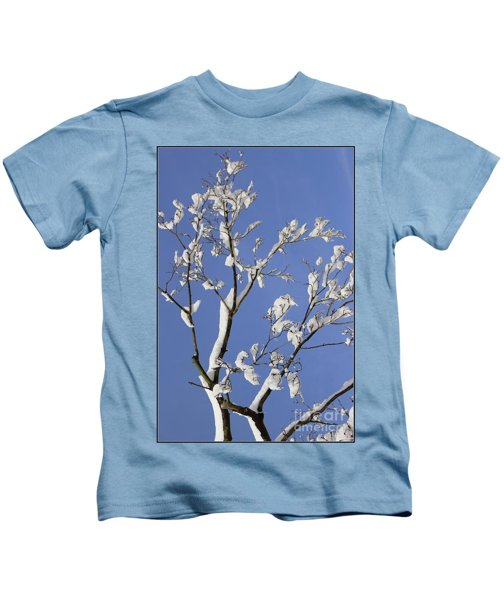 Snow Kids T-Shirt featuring the photograph Fresh Snow And Blue Skies by Dora Sofia Caputo Photographic Design and Fine Art