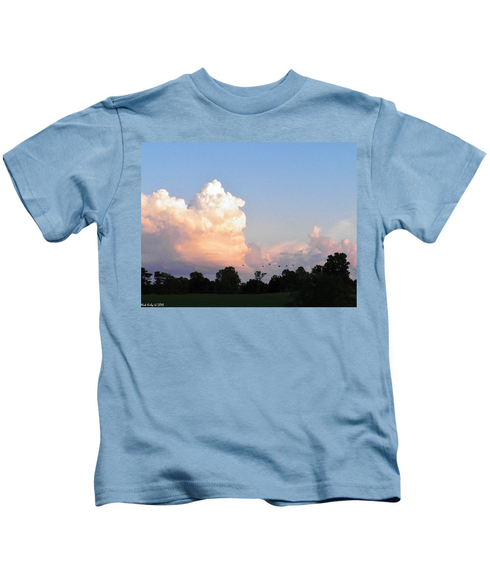 Geese Kids T-Shirt featuring the photograph Geese In The Evening by Nick Kirby