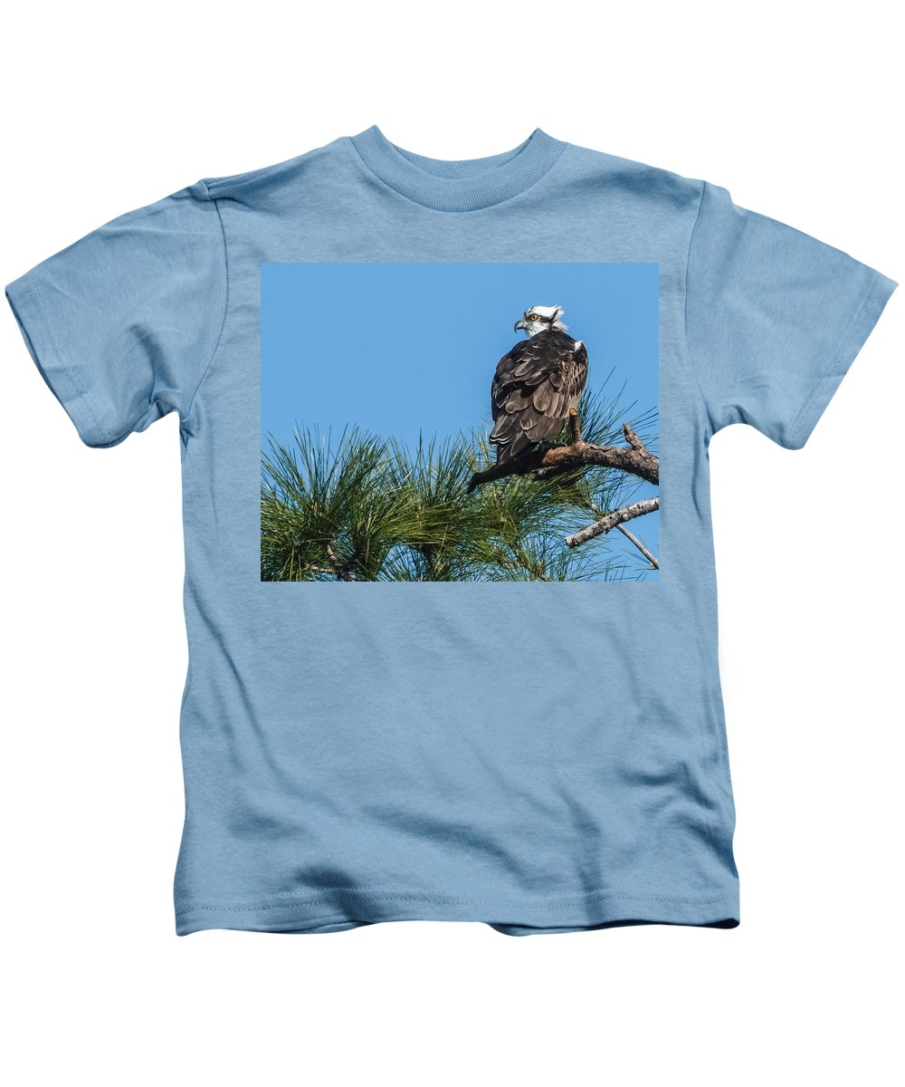 Florida Kids T-Shirt featuring the photograph Osprey Keeping Watch by Jane Luxton