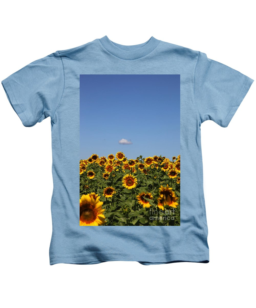 Sunflower Kids T-Shirt featuring the photograph Passing By by Amanda Barcon