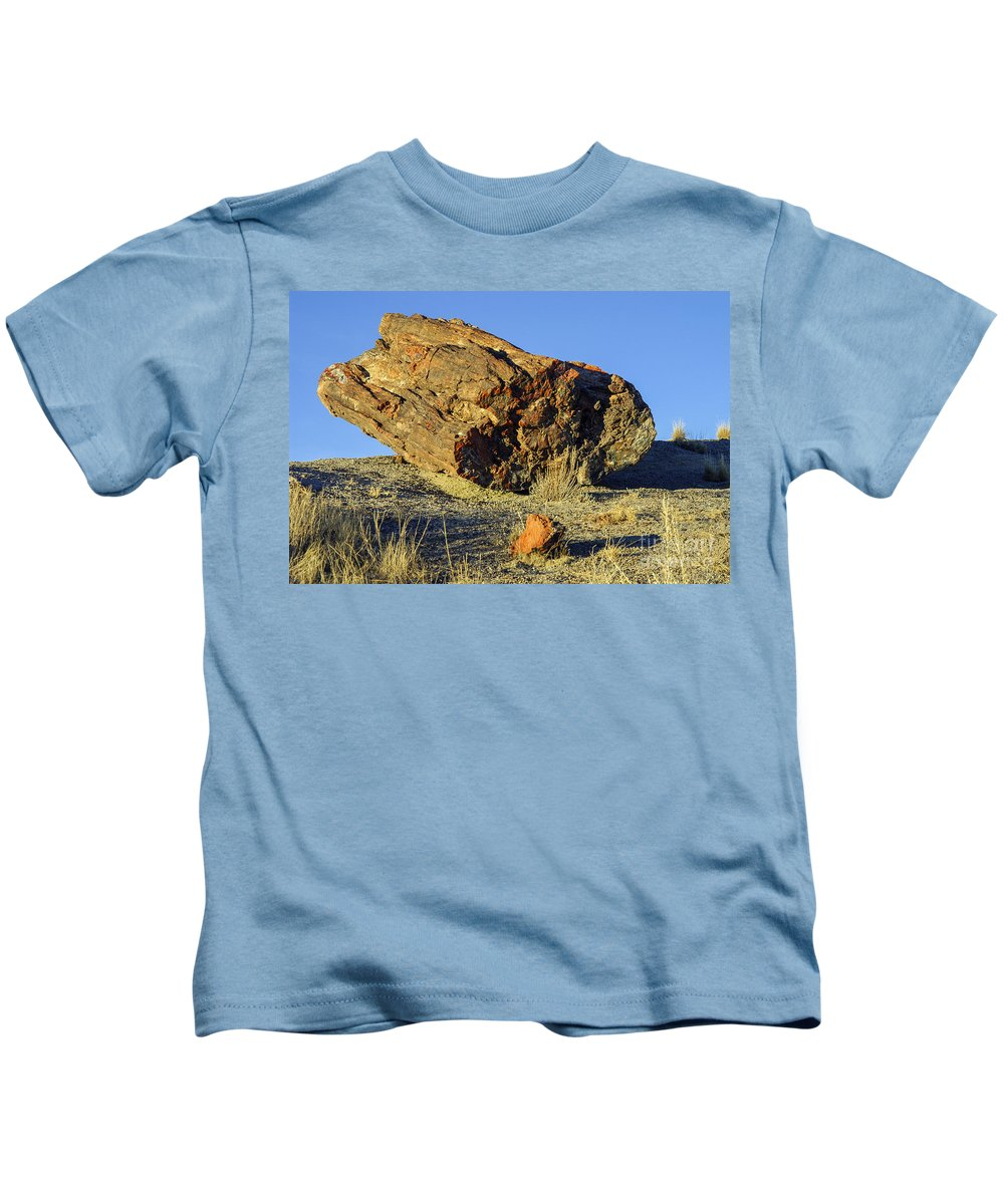 Petrified Forrest National Park Arizona Parks Log Logs Tree Trees Desert Deserts Desertscape Desertscapes Landscape Landscapes Landmarks Landmark Kids T-Shirt featuring the photograph Petrified Log by Bob Phillips