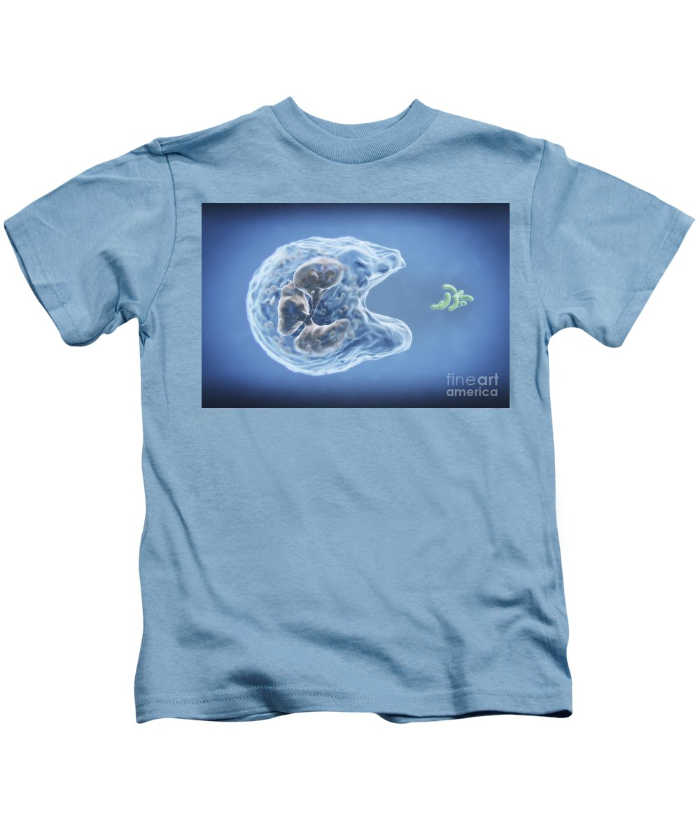 Immune System Kids T-Shirt featuring the photograph Phagocytosis by Science Picture Co