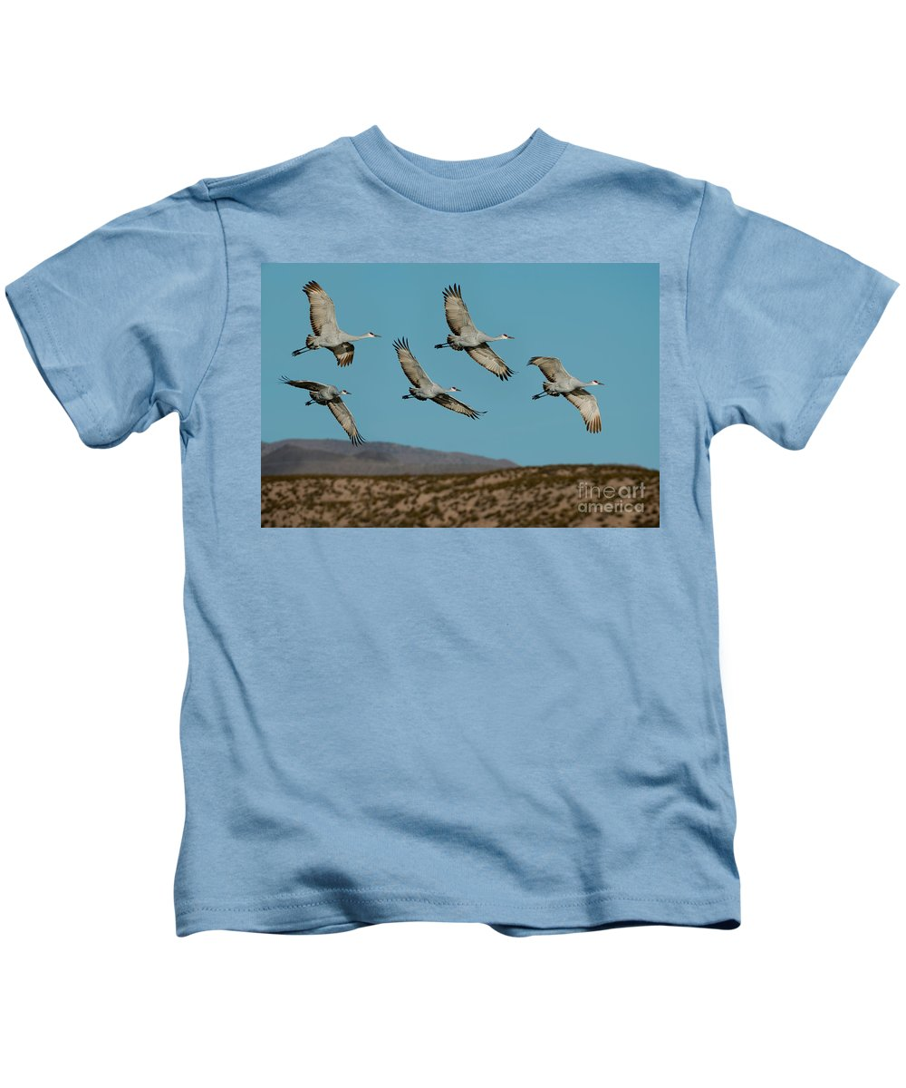 Sandhill Crane Kids T-Shirt featuring the photograph Sandhill Cranes Over Chupadera Mountains by Anthony Mercieca