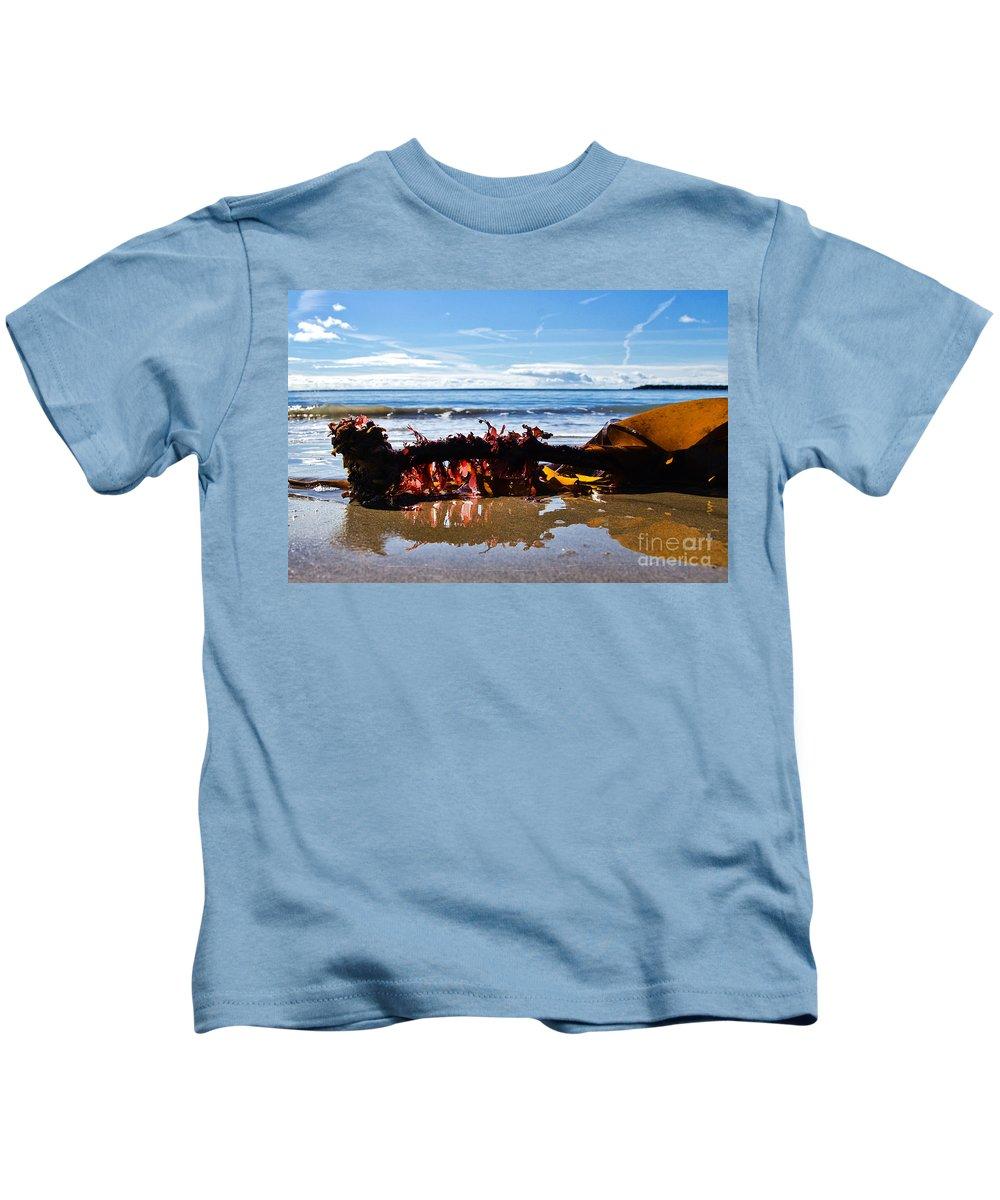 Lyme Regis Kids T-Shirt featuring the photograph Seaweed 1 by Susie Peek