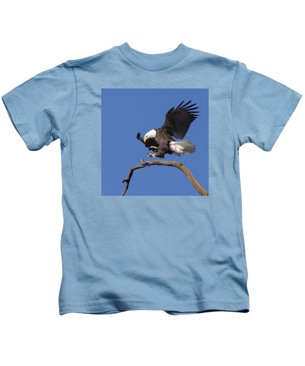 Eagle Kids T-Shirt featuring the photograph Smooth Landing 6 by David Lester