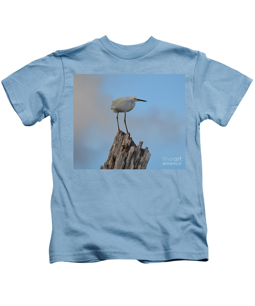 Snowy Kids T-Shirt featuring the photograph Snowy Perched Against A Bright Blue Sky by Patricia Twardzik