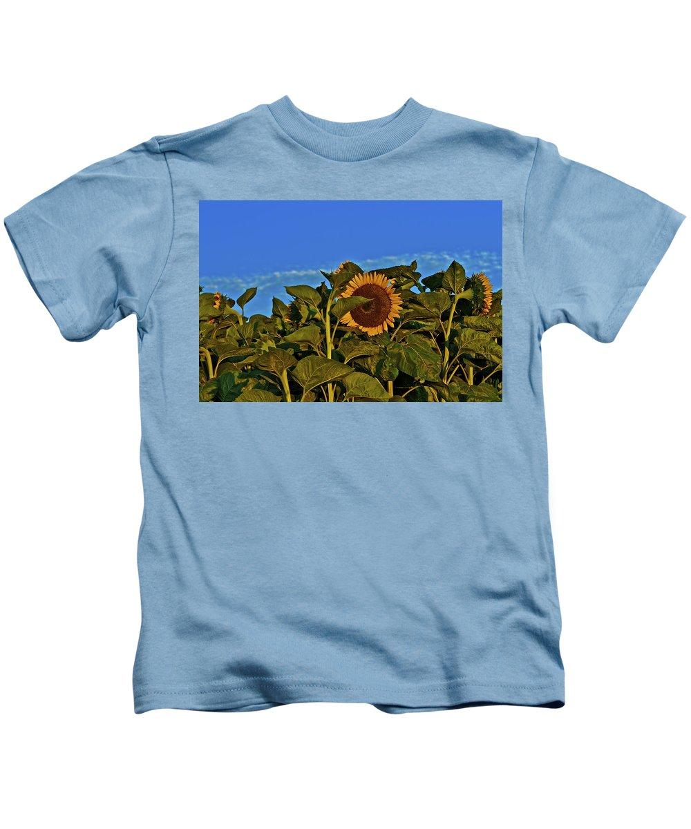 Sunflower Kids T-Shirt featuring the photograph Sunflower 1 by SC Heffner