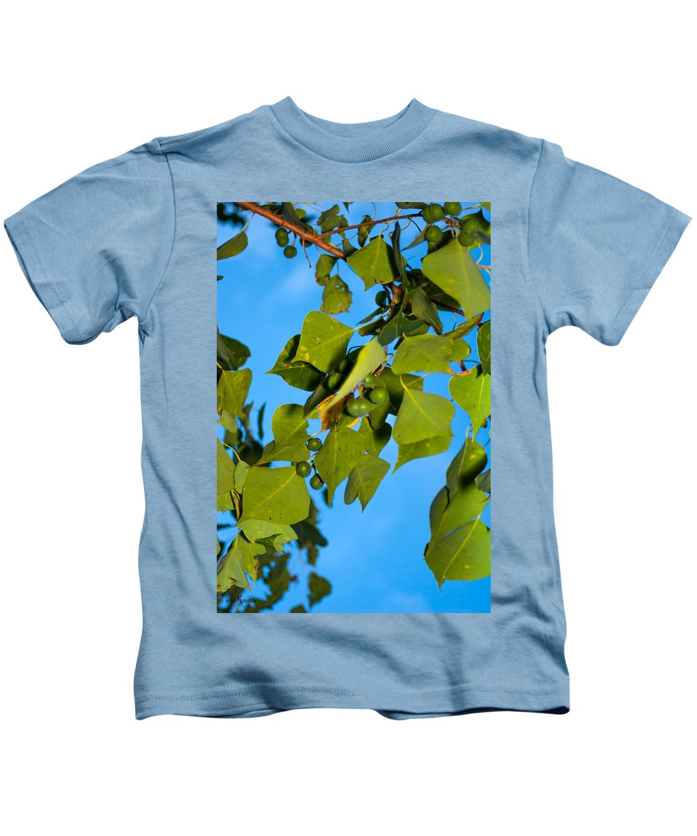 The Beauty Of Nature Kids T-Shirt featuring the photograph The Beauty Of Nature by Mechala Matthews
