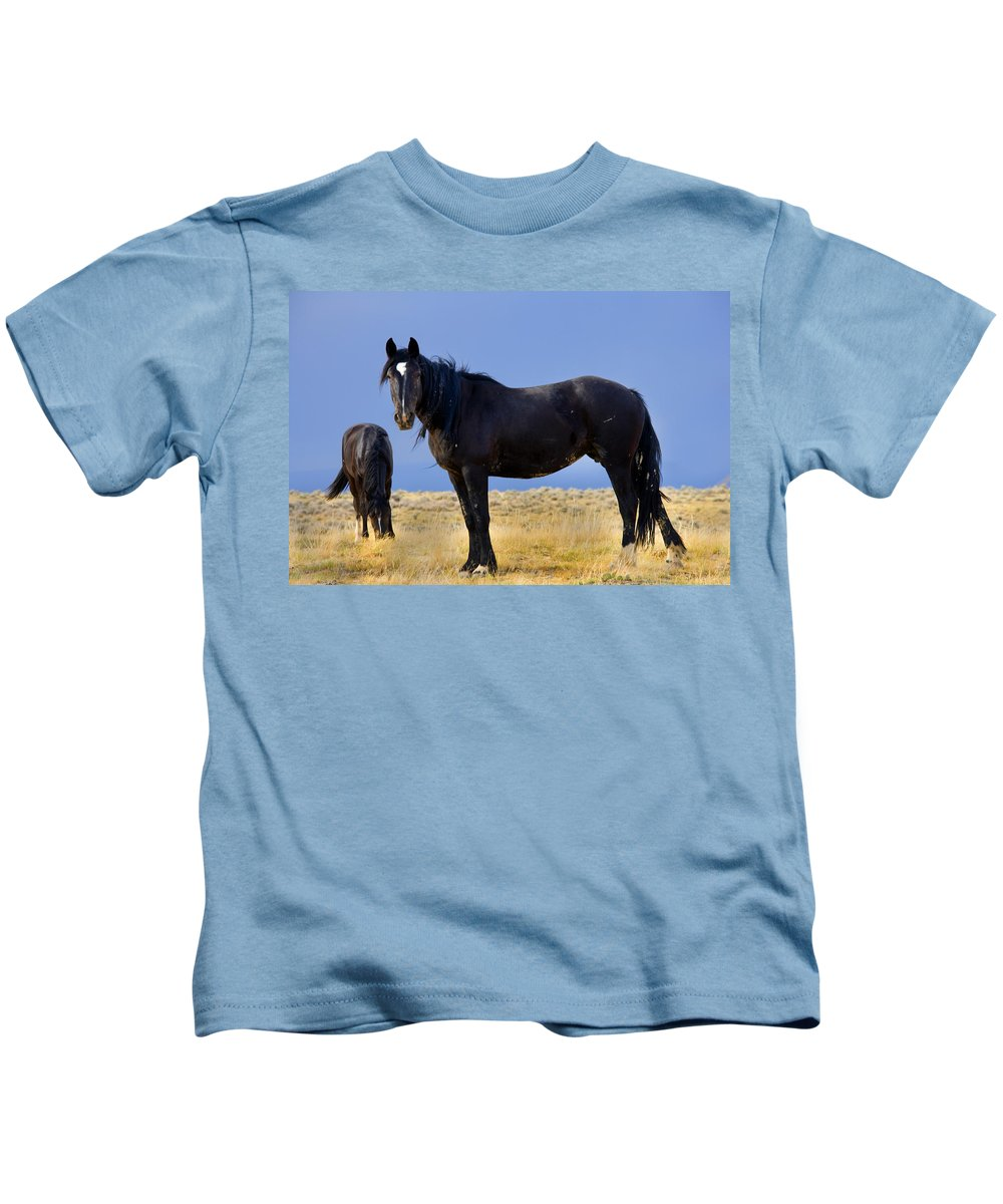 Wild Mustangs Kids T-Shirt featuring the photograph Watching You Wild Mustang by Rich Franco