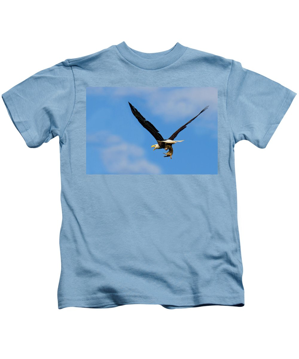Bald Eagle Photograph Kids T-Shirt featuring the photograph When Dogs Fly by Jim Garrison