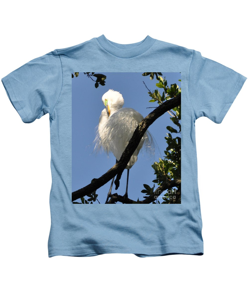 Egret.snowy Egret Kids T-Shirt featuring the photograph White Egret by Lydia Holly