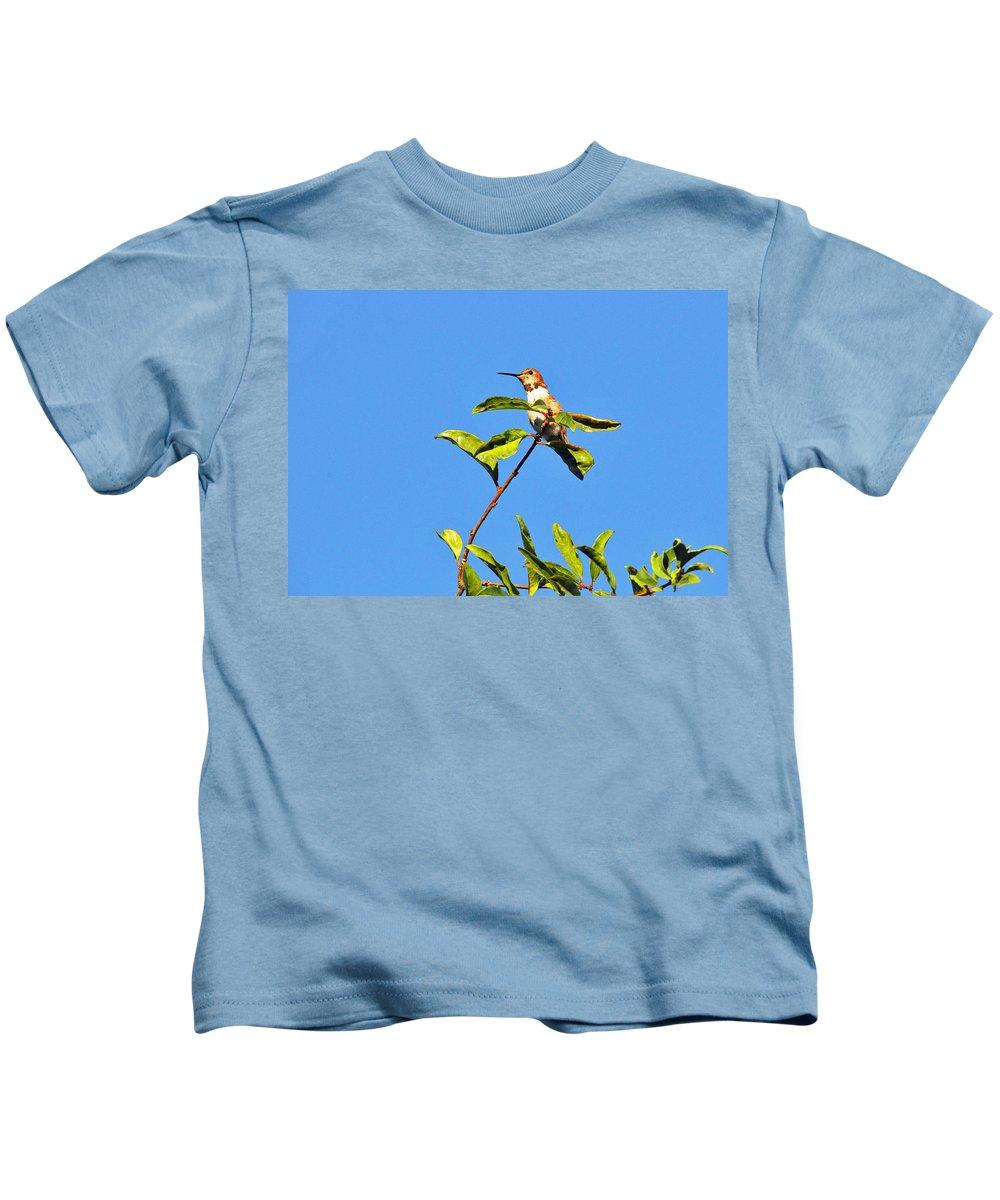 Birds Kids T-Shirt featuring the photograph Sitting Pretty by Lynn Bauer