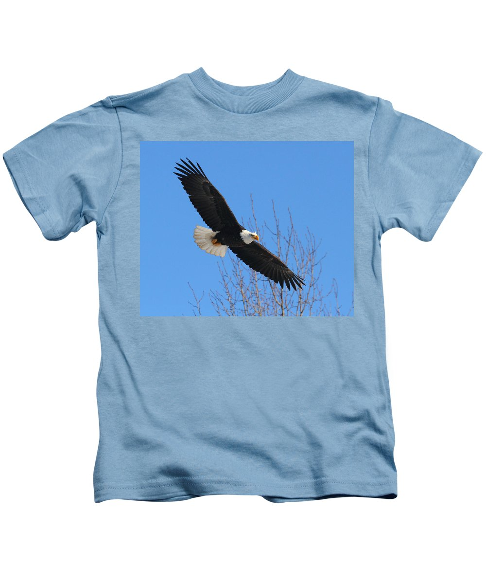 Doug Lloyd Kids T-Shirt featuring the photograph American Bald Eagle by Doug Lloyd