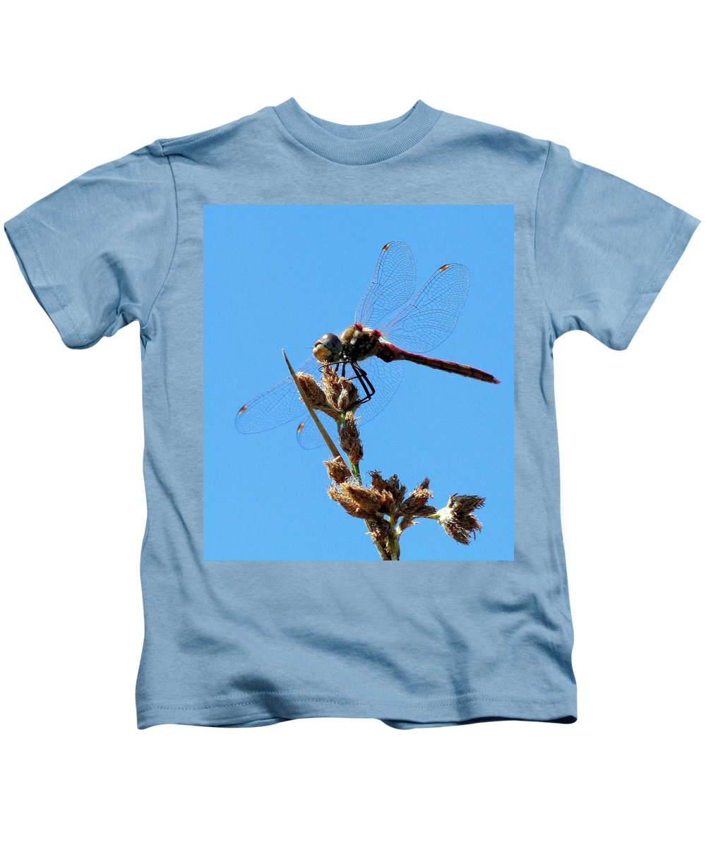 Dragonfly Kids T-Shirt featuring the photograph Dragonfly Dreams by Judy Garrett