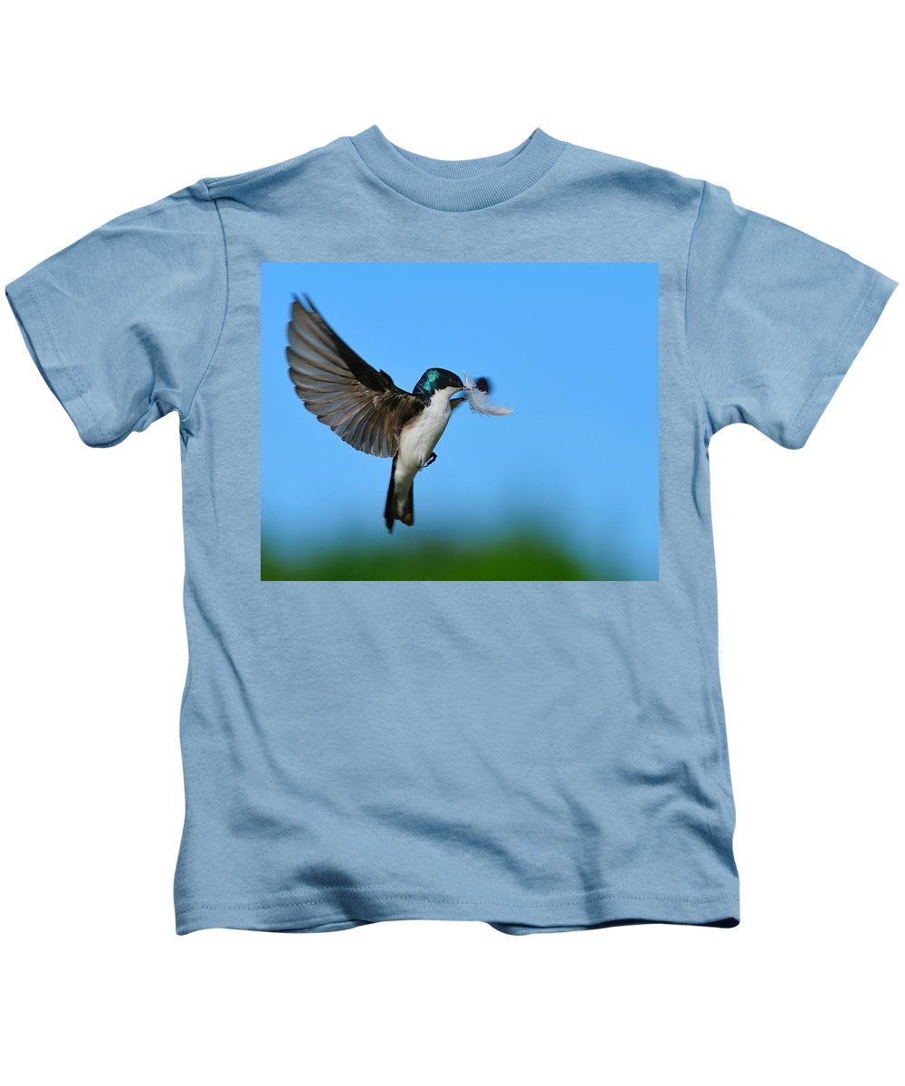 Tree Swallow Kids T-Shirt featuring the photograph Light As A Feather by Tony Beck