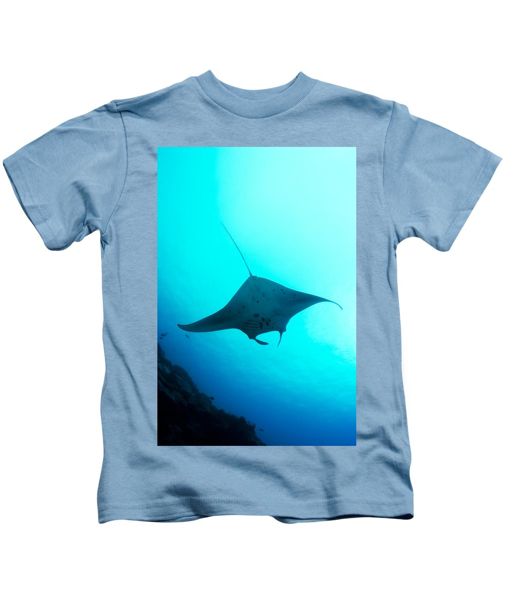 Birostris Kids T-Shirt featuring the photograph Manta Ray by Dave Fleetham - Printscapes