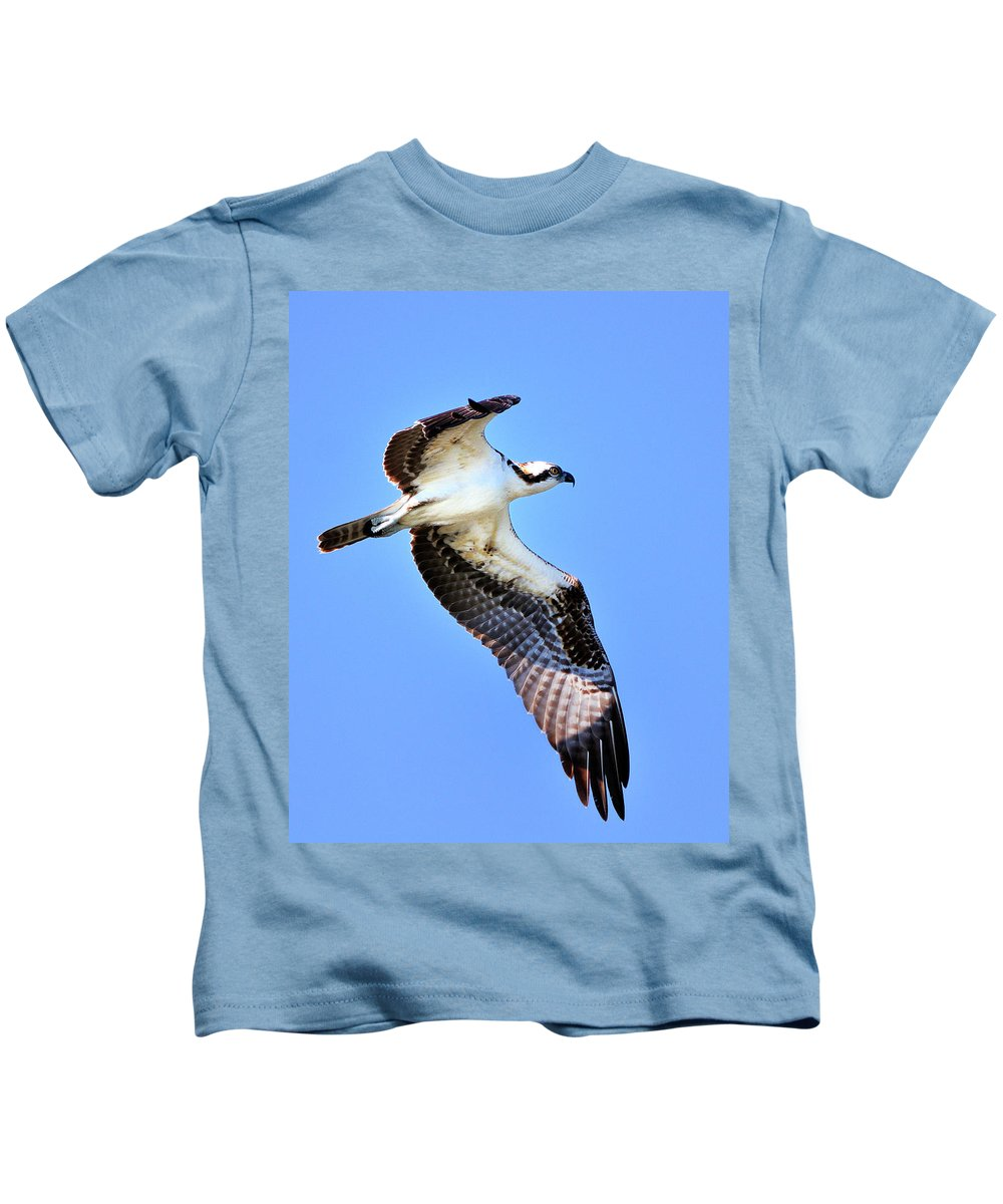 Osprey Kids T-Shirt featuring the photograph Osprey Inflight by Bill Dodsworth