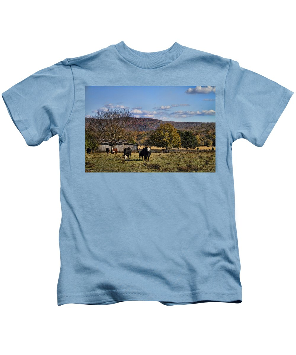 White Kids T-Shirt featuring the photograph White Faced Cattle In Autumn by Kathy Clark