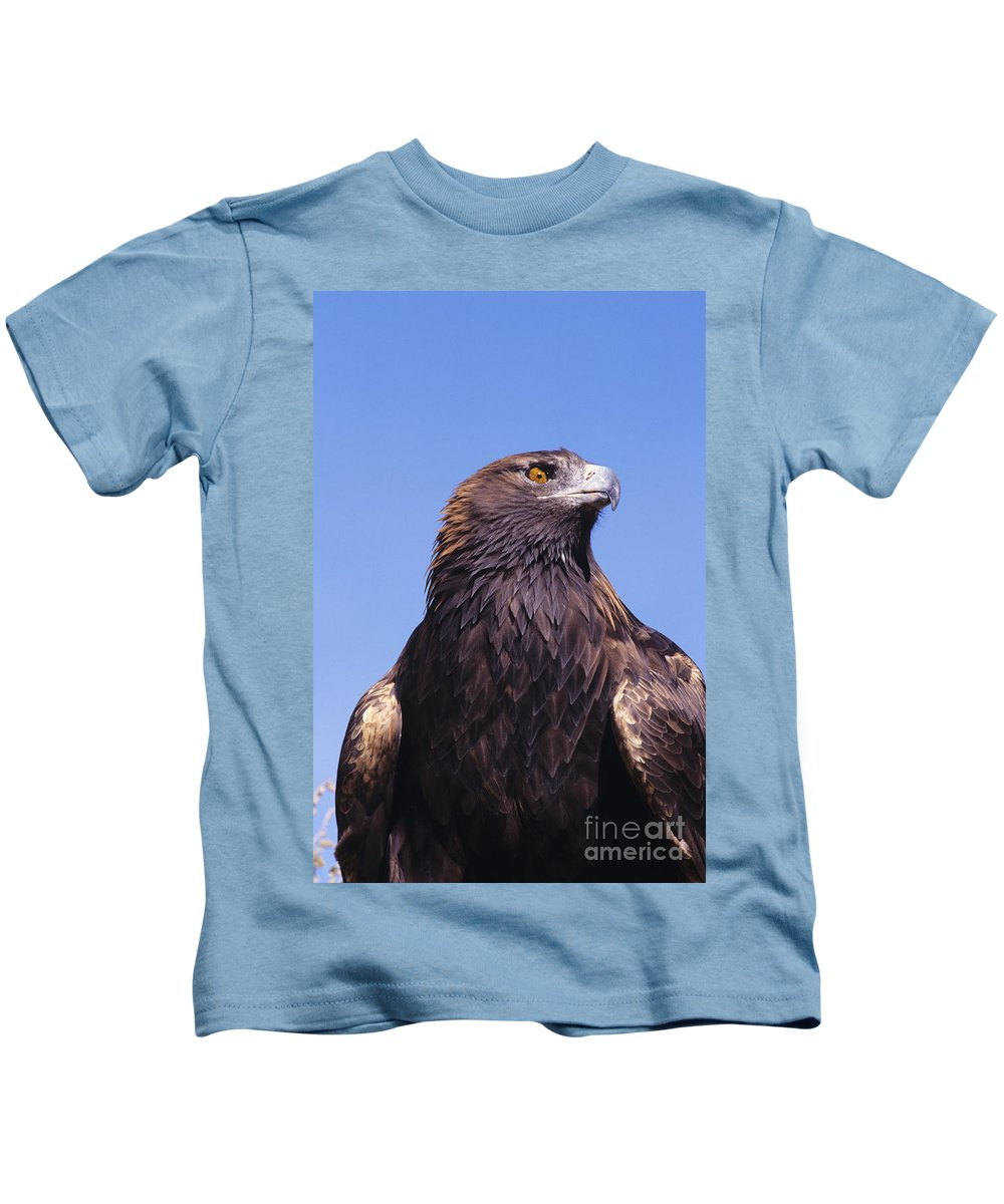 Animal Art Kids T-Shirt featuring the photograph Golden Eagle by John Hyde - Printscapes