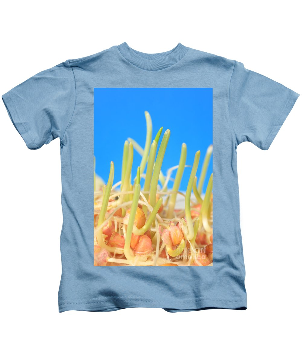 Plant Kids T-Shirt featuring the photograph Early Corn Development, Zea Mays by Ted Kinsman