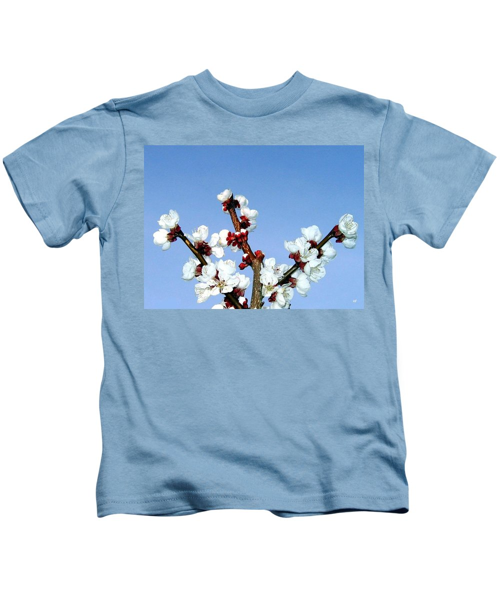 Apricot Blossoms Kids T-Shirt featuring the photograph Apricot Blossoms by Will Borden