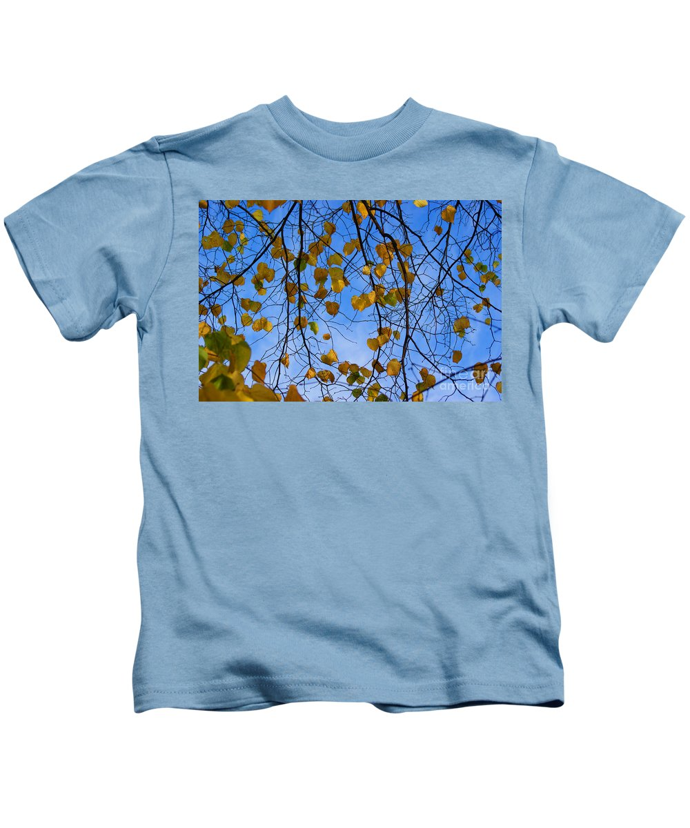 Autumn Kids T-Shirt featuring the photograph Autumn Leaves by Carol Lynch