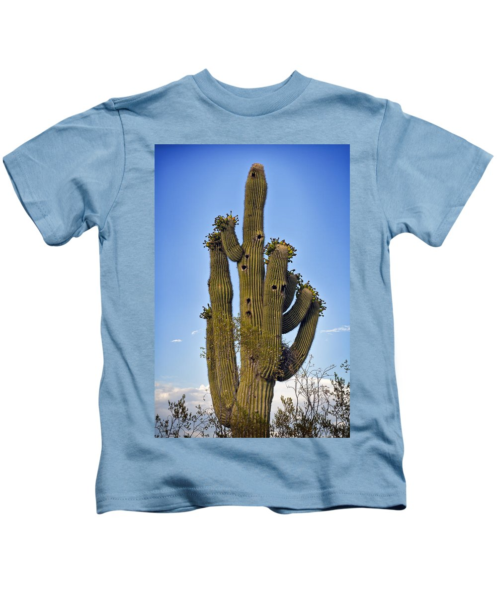 Saguaro Kids T-Shirt featuring the photograph Bird House Condos by Kelley King
