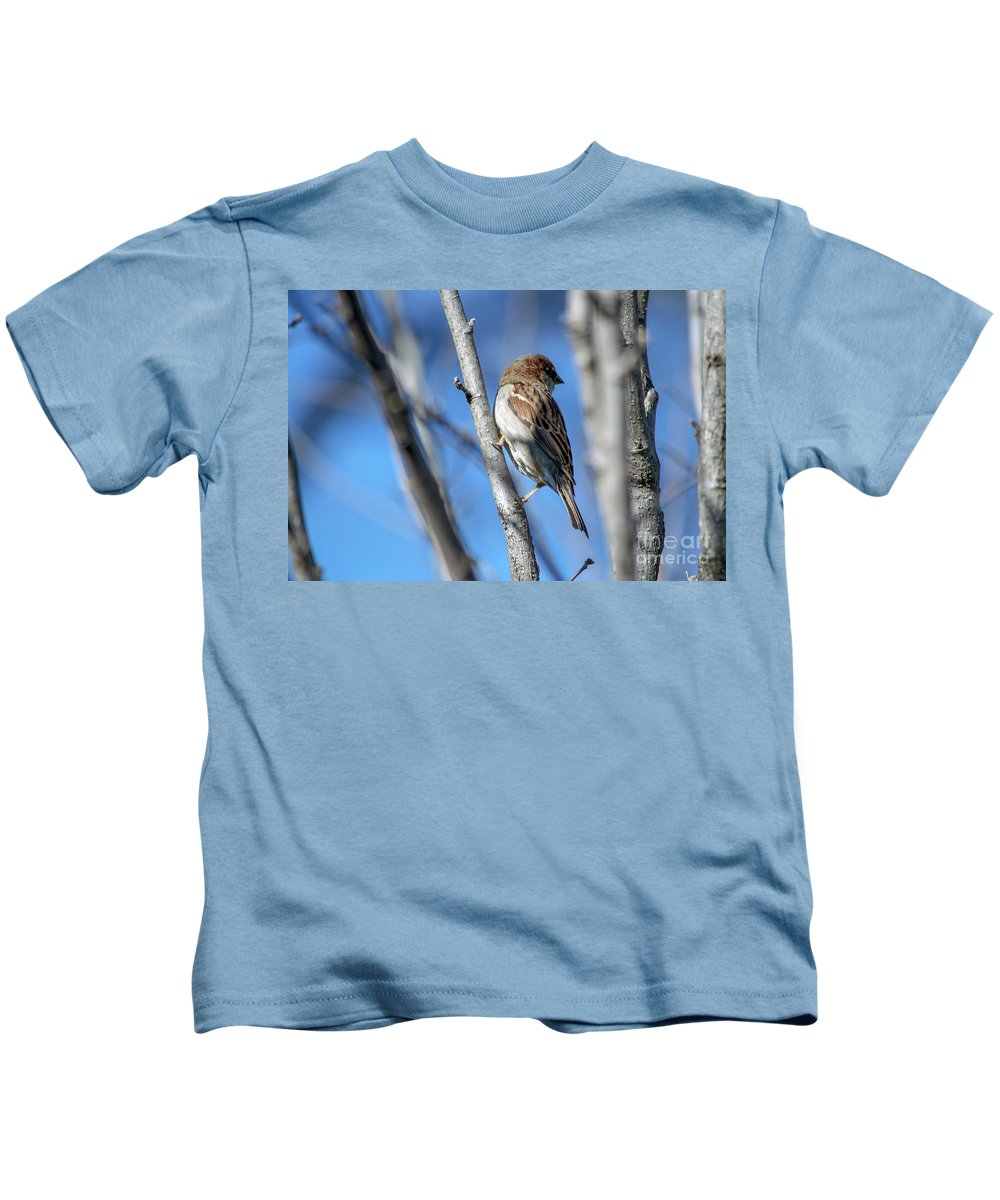 Birds Kids T-Shirt featuring the photograph Blue Skies by Christopher Saleh