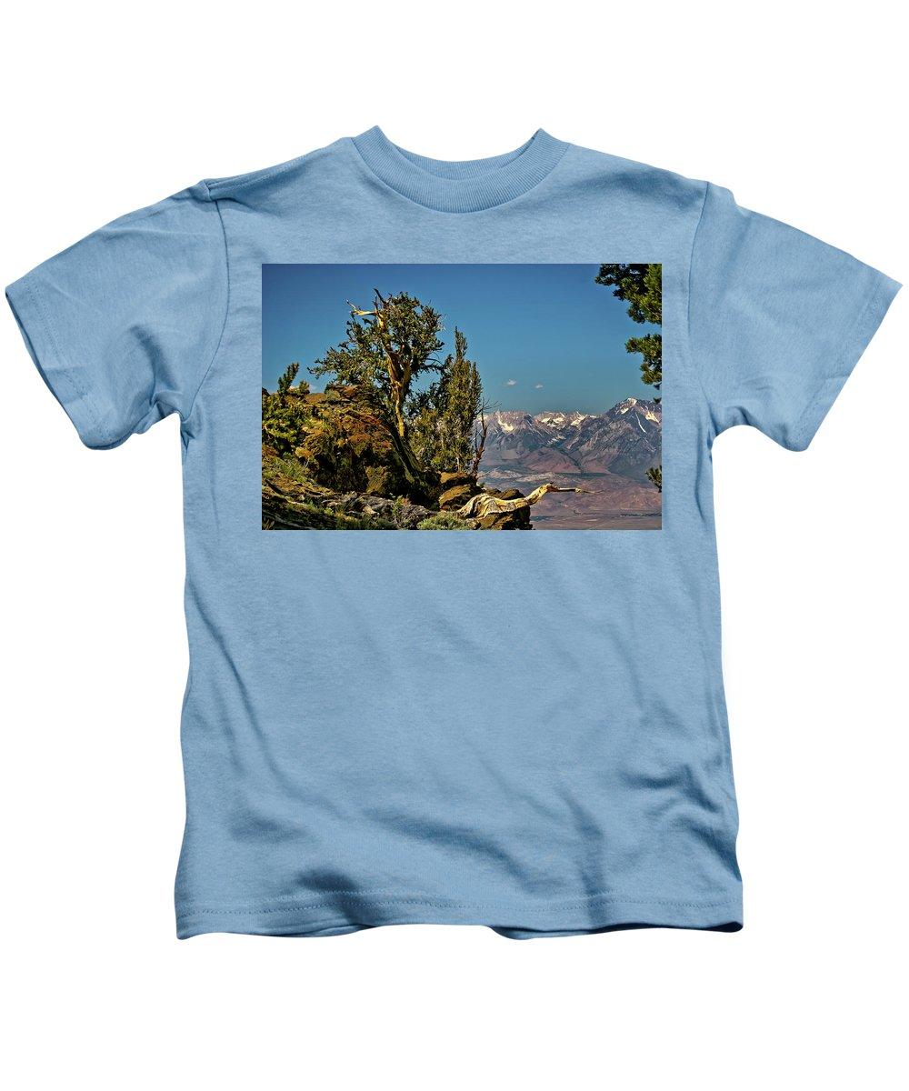 Bristlecone Pine Kids T-Shirt featuring the photograph Bristlecone Pine by Albert Seger