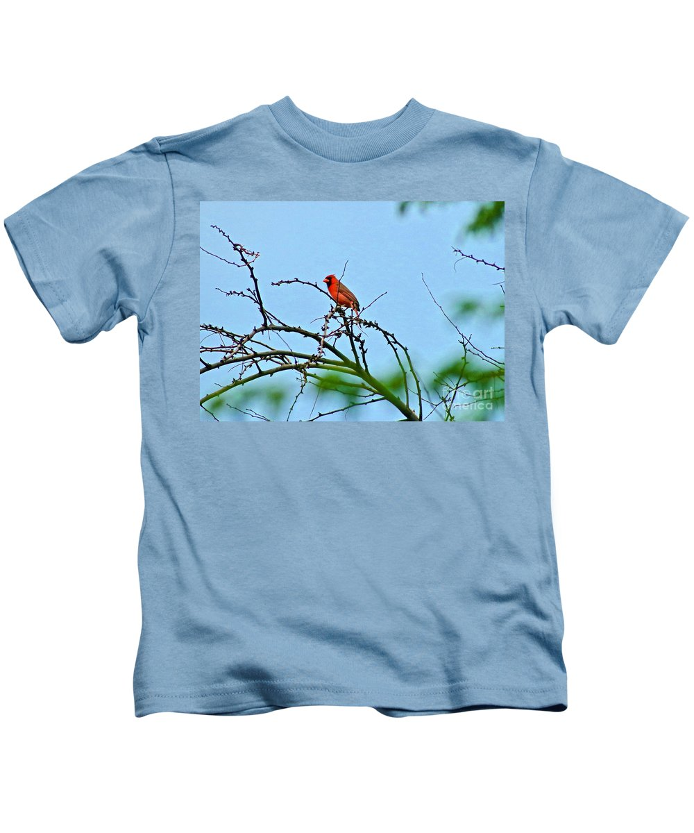 Bird Kids T-Shirt featuring the photograph Cardinal Calling by Craig Wood