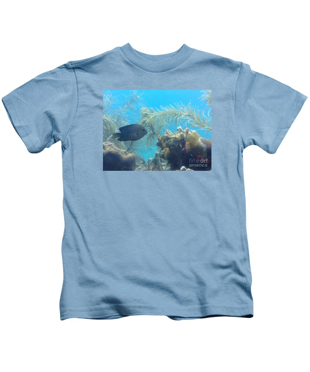 Ocean Kids T-Shirt featuring the photograph Carribean Sea Life by Gina Sullivan