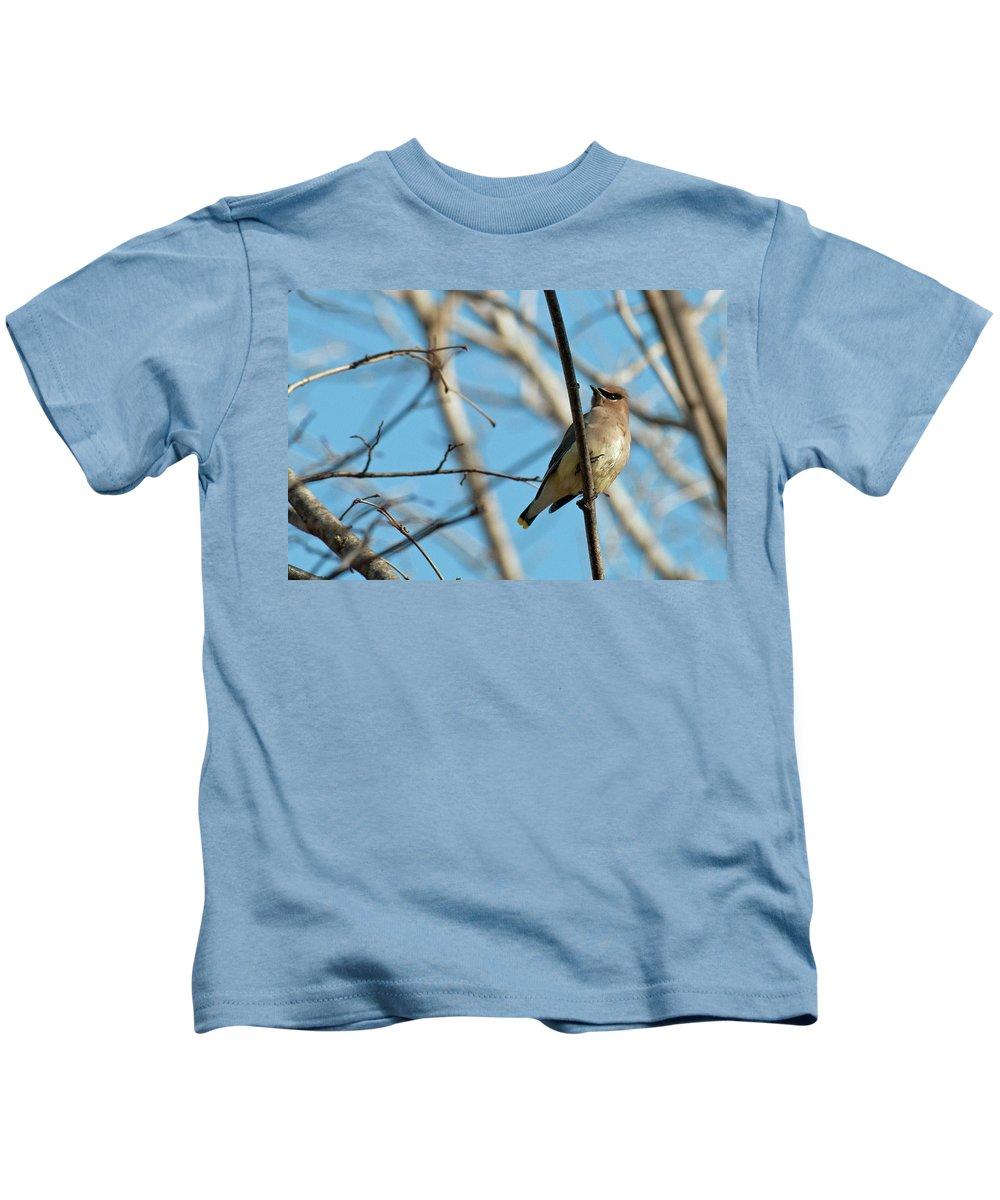 Bird Kids T-Shirt featuring the photograph Cedar Wax Wing by David Arment