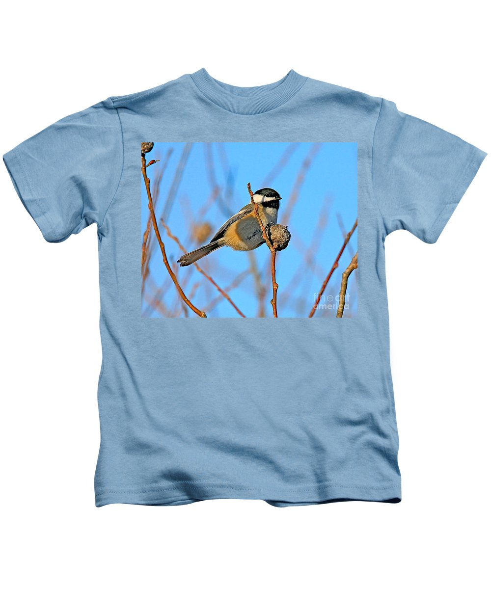 Chickadee.biid Kids T-Shirt featuring the photograph Chickadee by Robert Pearson